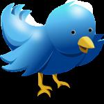 Twitter porta i video a 360 gradi