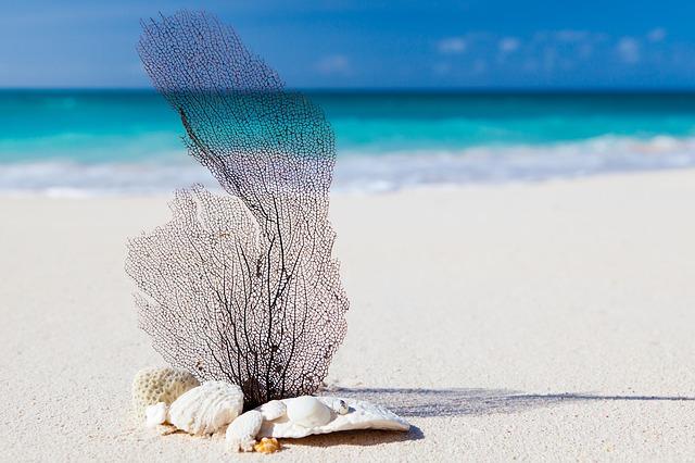 la sabbia dei caraibi