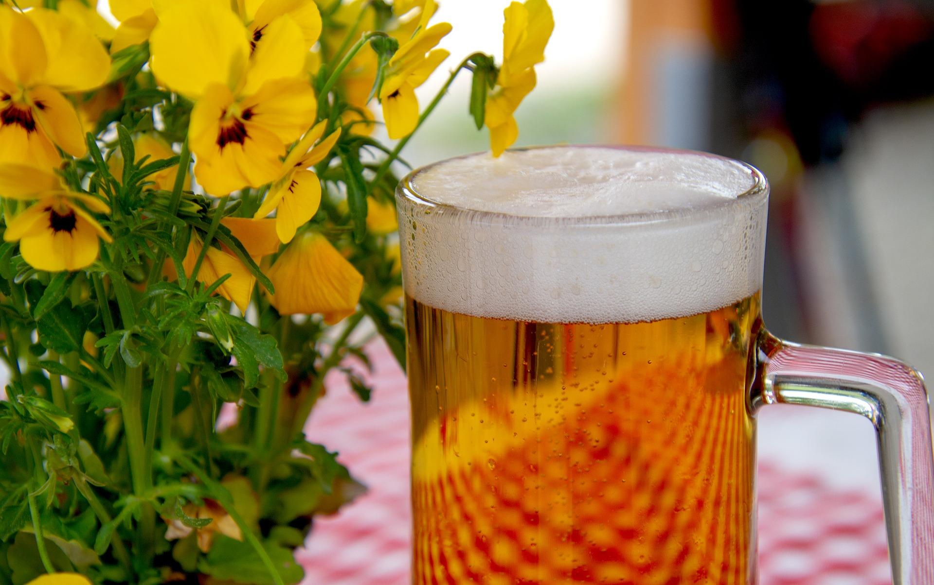 2 beer-3378136_1920